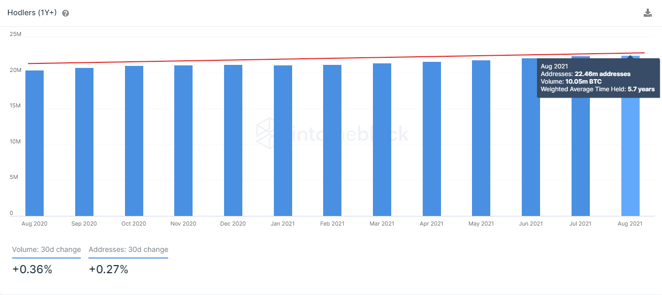 Wachstumsverlauf an Langzeitinvestoren in Bitcoin